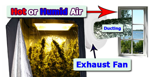 Learn how to set up a professional Exhaust System